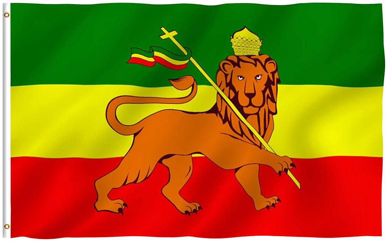 Rasta Shop Flag